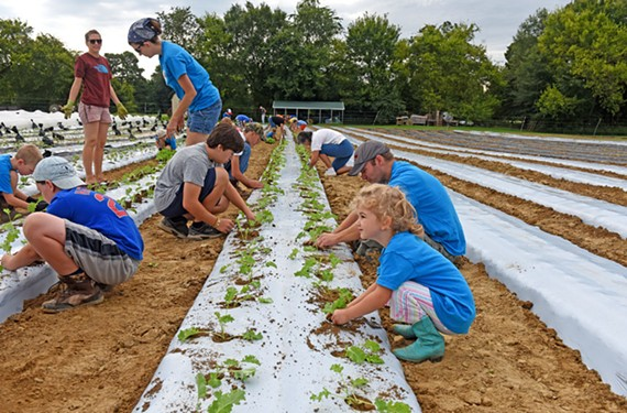 Volunteers from Powhatan United Methodist Church help to plant new rows. Shalom Farms emphasizes organic, sustainable methods in its production. - SCOTT ELMQUIST