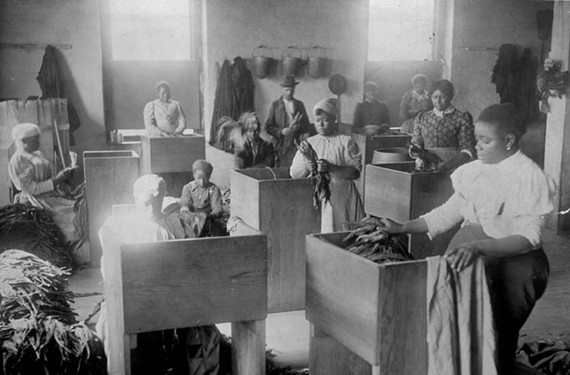 African-American women sort tobacco at T.C. Williams & Co. in 1899.
