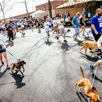 18th annual Dog  Jog and 5-K at Richmond SPCA