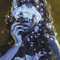 "Virginia Opera's ""A Midsummer Night's Dream"" Creates a Fantastical World"