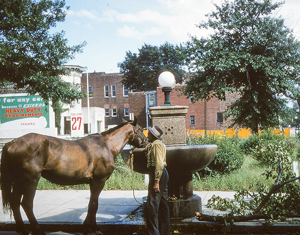 Coleman and his horse, Price and Leigh streets, Jackson Ward, August 1955. - EDITH K. SHELTON PHOTOGRAPH COLLECTION, THE VALENTINE