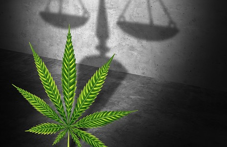 The Case for Cannabis