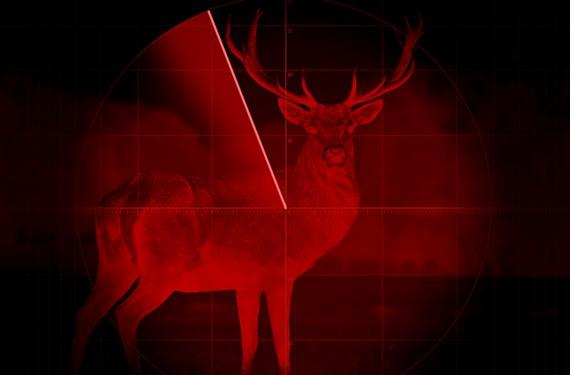 back47_hunting.jpg