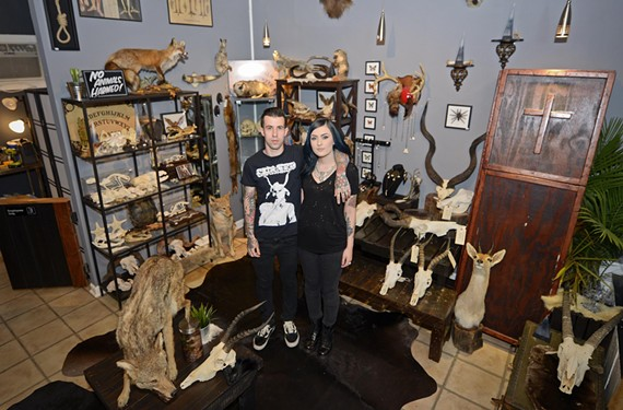 Justin Torone and Alaina Gearhart recently opened a Fan gift shop based on their taxidermy pursuits.