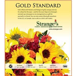 strange_s_full_0928.jpg