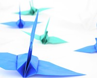 Election Recovery: Peace, Love and Paper Cranes