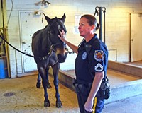 Supporters Say It's Time for Richmond's Police Horses to Get a New Home