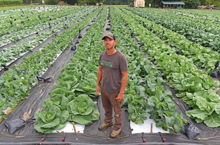 Director of farm operations Steve Miles stands in front of rows of growing plants. Part of the challenge at Shalom Farms is managing which tasks can be performed by the thousands of its yearly volunteers. - SCOTT ELMQUIST