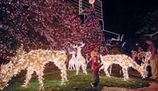 Six Ways to Light Up Your Richmond Holidays