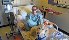 Dogs on Call Spread Comfort and Soothe Patients at VCU
