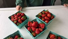 Get Picking, Because This is the Earliest Start to the Strawberry Season in Memory