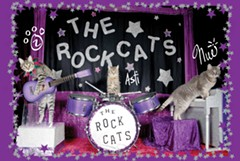 The Rock Cats rock out - Uploaded by AcroCatsMedia