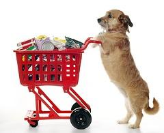 1ab23135_shopping_dog.jpg