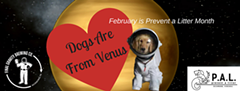 ea0c6b97_dogs_are_from_venus.png
