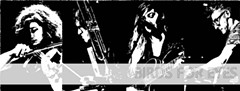 24cbbcba_birds.jpg