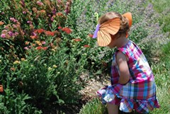 eb743039_child_looking_for_bees.jpg