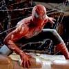 spiderman_100.jpg