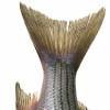 fish100.jpg