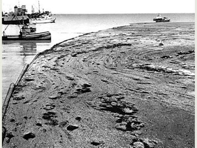1969 Santa Barbara oil spill