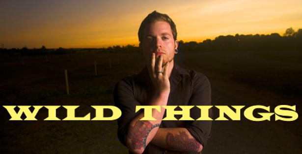 AJA Silver: David Harper's Wild things