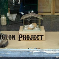 <i>The Pigeon Project </i> pops up