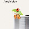 Carla Gunn reads new novel <I>Amphibian</I> at Frog Hollow