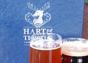 Halifax's top beer bars