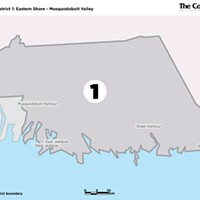 District 1 <br /> (Eastern Shore - Musquodoboit Valley)