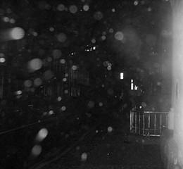 Facing the rain on Barrington Street. - CHRIS SMITH
