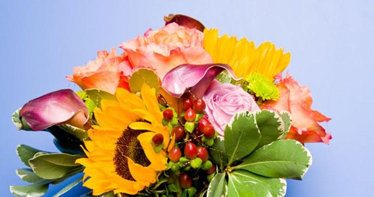 blossomshops.jpg