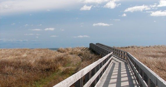 Follow the wide-planked road to the ocean kingdom. - CATHERINE EWER