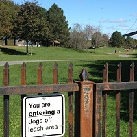Former residents of Afrcville say the designation of the area as a dog park is insulting.