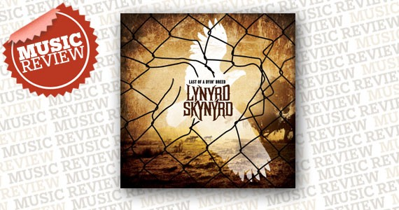 review-music-skynryd.jpg