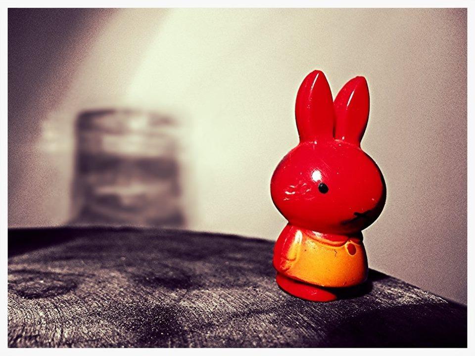 photo via White Rabbit, Red Rabbit Facebook page
