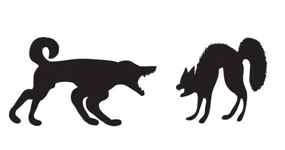 dogcat.png