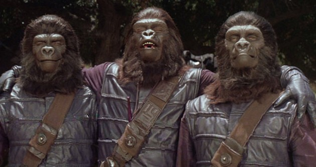 The apes see no evil, speak no evil, hear no evil.