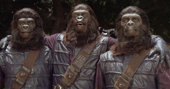 The apes see no evil, speak no evil, hear no evil.