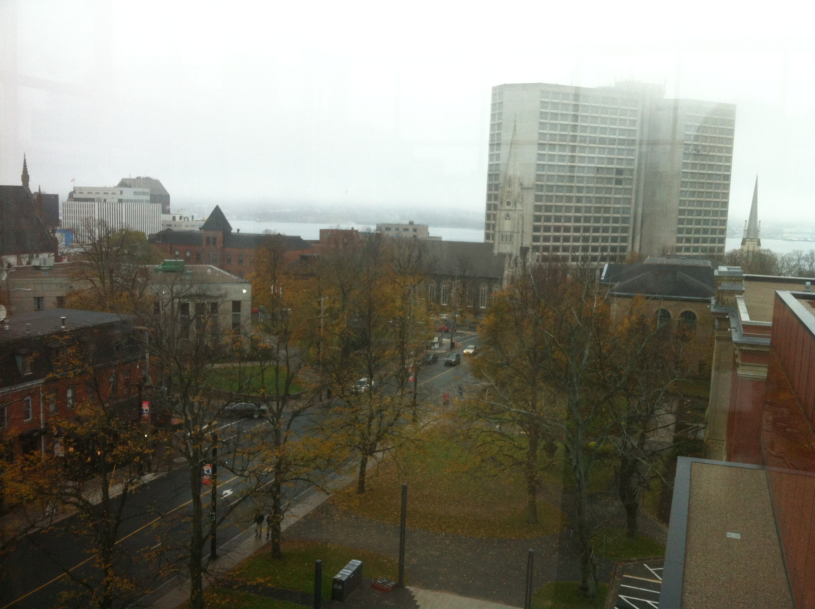 The view of the Harbour from the library's fifth floor.