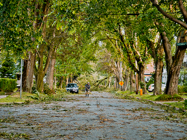 Fallen branches and debris litter Dublin Street after Hurricane Dorian ripped through Halifax. - COREY ISNOR