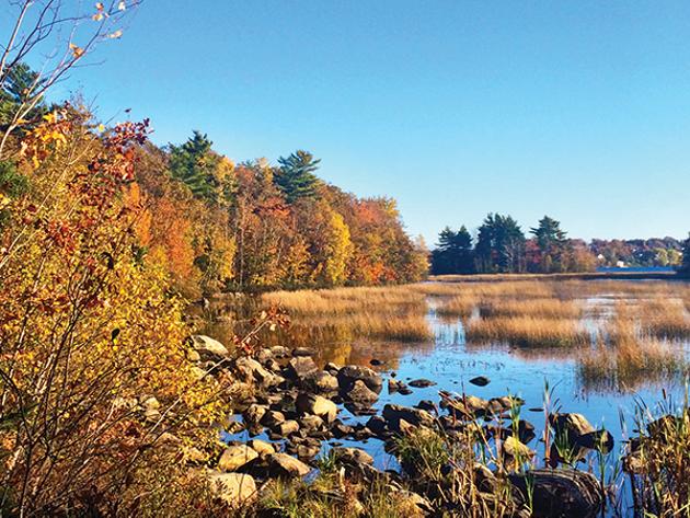 Shubie Park offers a scenic stroll. - LAURA HAWKINS