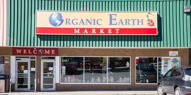 Organic Earth Market - SAMSON LEARN