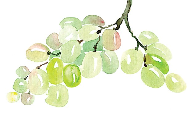 feature.grapes.jpg