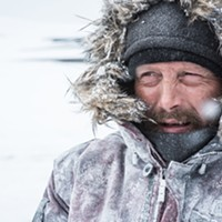 Film review: <i>Arctic</i>