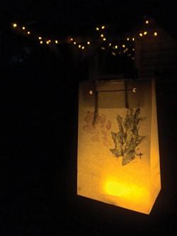 luminaryforestation.jpg