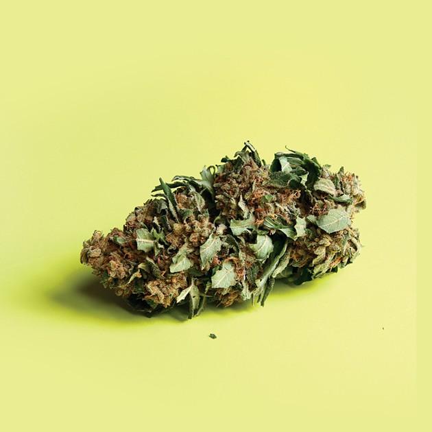 weedcover.jpg