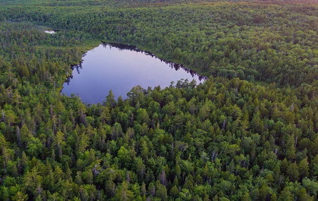 Hobson Lake in the Blue Mountain-Birch Cove Lakes area. - VIA FLITELAB