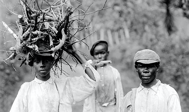 Maroon boys collecting wood in 1908. - H. H. JOHNSTON