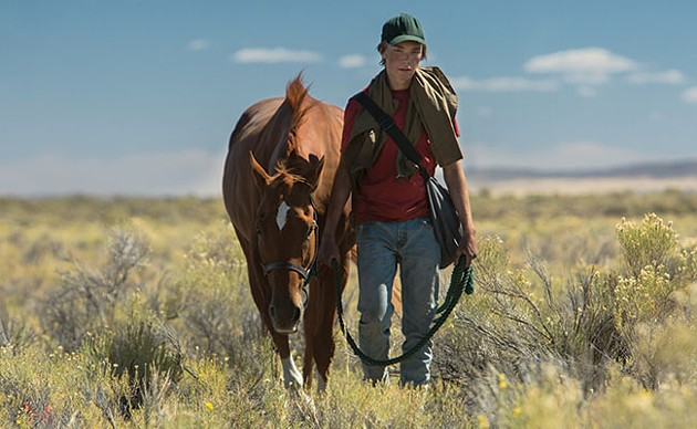 Starsky as Lean On Pete and Charlie Plummer as Charley in Lean On Pete. - ELEVATION PICTURES