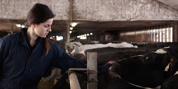 A scene from Heather Young's short film Milk. Young's feature Murmur is one of the region's funding recipients.
