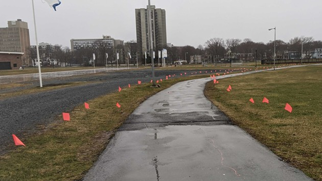 Flags line paths open for essential travel in the Halifax Common. - CAORA MCKENNA